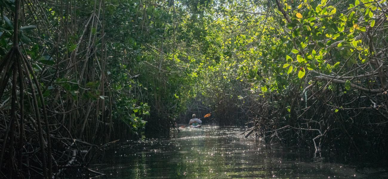 Eco Adventure Kayak