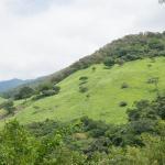 Vamo Pa La Sierra Zanca