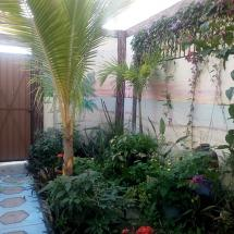 front-garden.jpg