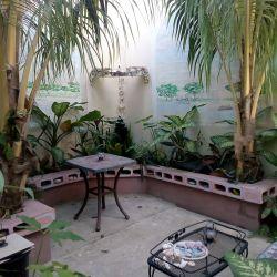 backyard-garden.jpg