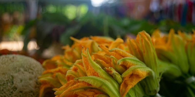 Natural Product Local Organic