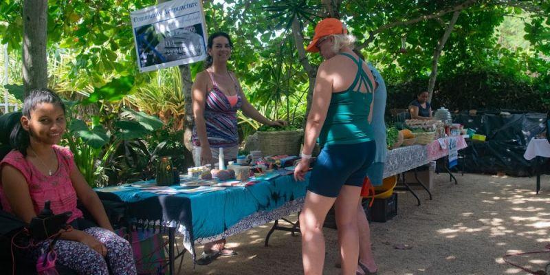 Troncones Local Organic Mercadito