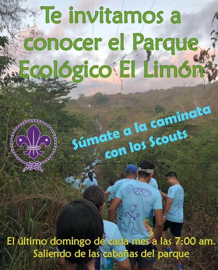 Caminata Scout en Parque El Limón